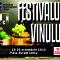 festivalul-vinului-2016-banner-web-300x250-pixeli