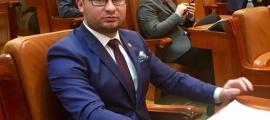 Varga Glad