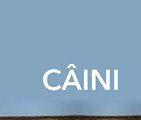caini 1 mare-2 (Copy)