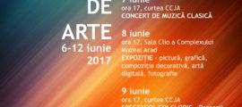 Zilele scolii populare de arte 2017 WEB
