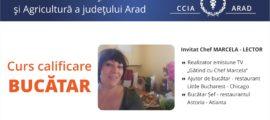 Curs Bucatar