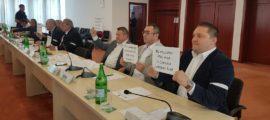 Consilieri PSD-ALDE