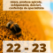 300x600px_aradreporter_ARP2020